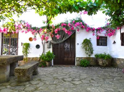 een Andalusische patio